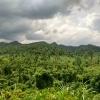 Phong Na_Jungla vista desde la carretera
