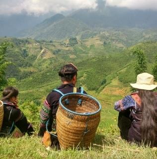 Vietnam. Parte IV: SAPA