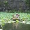 Tam Coc_vendedora jardin de loto